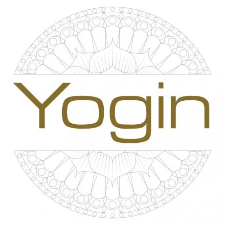 logo3-stor