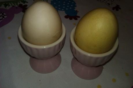 Två ägg i rosa äggkoppar. Det ena gult, färgat med saffran, det andra beige, färgat med rödbeta