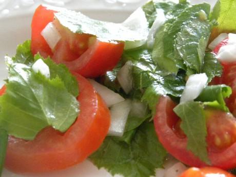 Sallad på tomater, björkblad lök på vitt fat