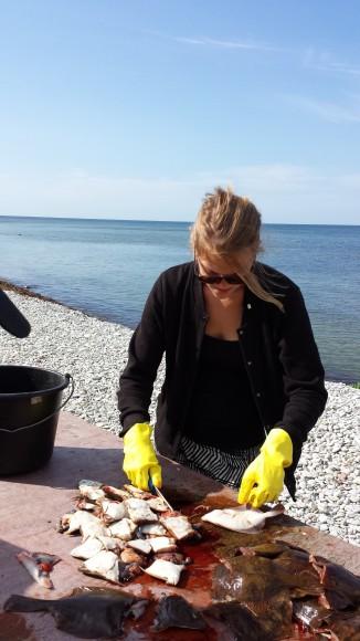 Kvinna rensar flundror på ett bord vid en strand på Gotland