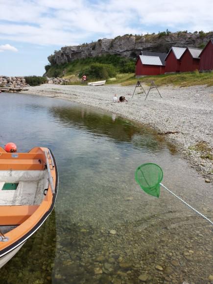 Eka, håv små strandbodar, berget Hallshuk/ Gotland