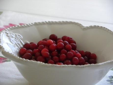 Röda härliga lingon i en vit vacker skål