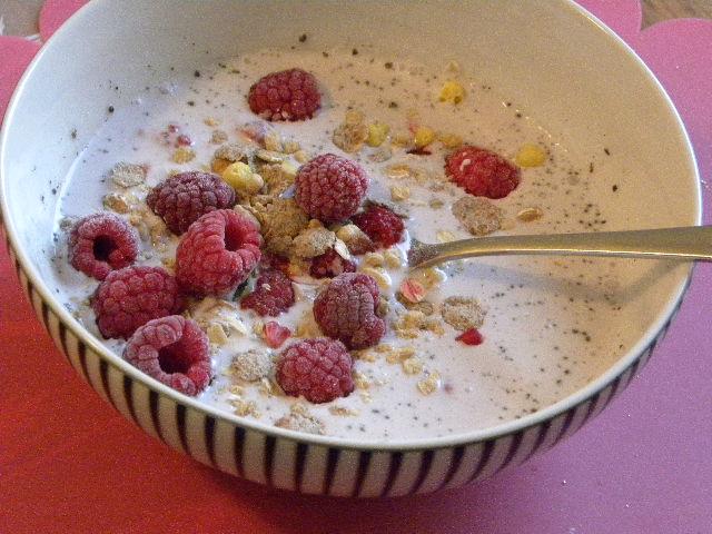 Yoghurt gjord av kokosmjölk toppad med bär och musli i en svart-vitrandig skål