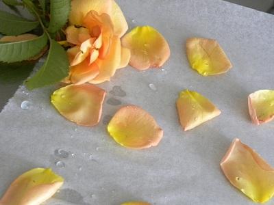 Rosenblad på ett bakplåtspapper