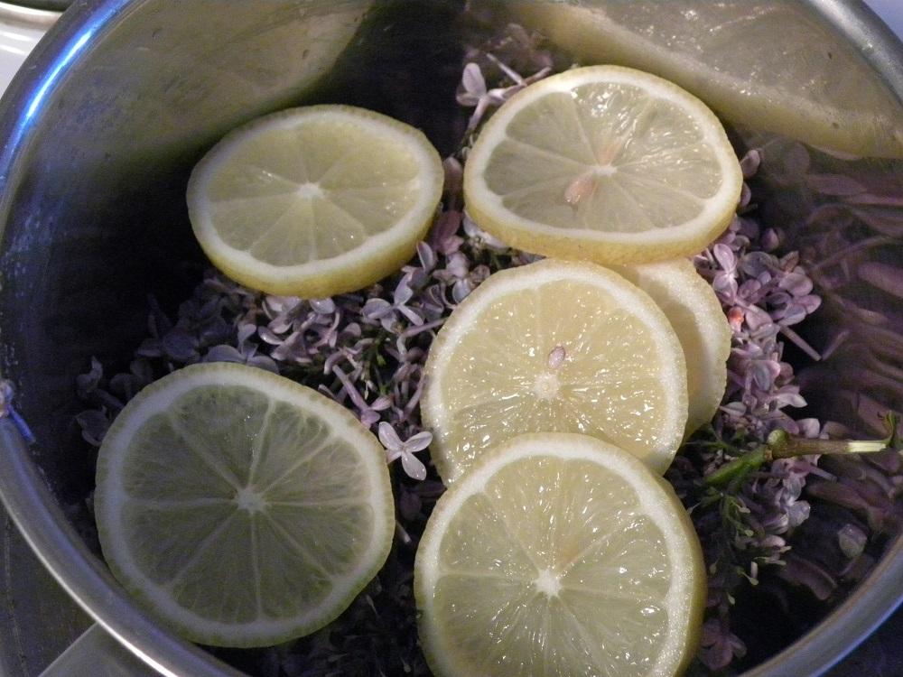 Syrenblommor med citron i en gryta