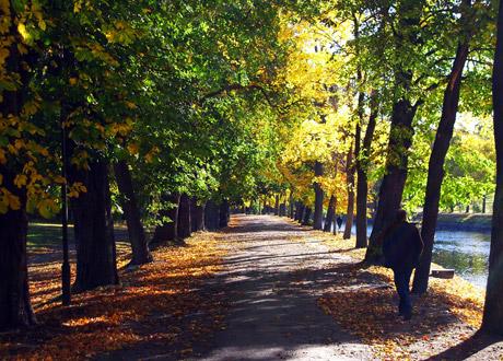 Stockholm promenadstråk