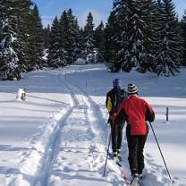 Två personer ute i längdskidspåret i vackert väder