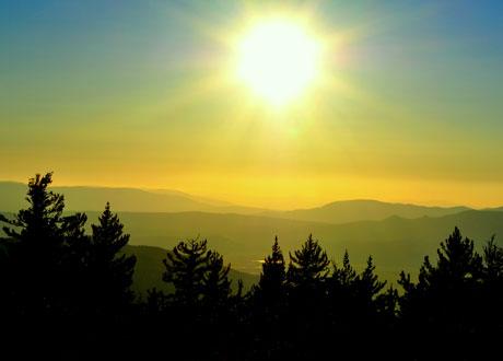 Sol går ner över skog