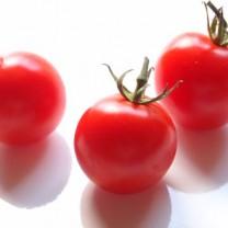 Röda tomater