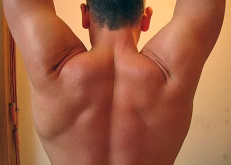 En muskulös mansrygg