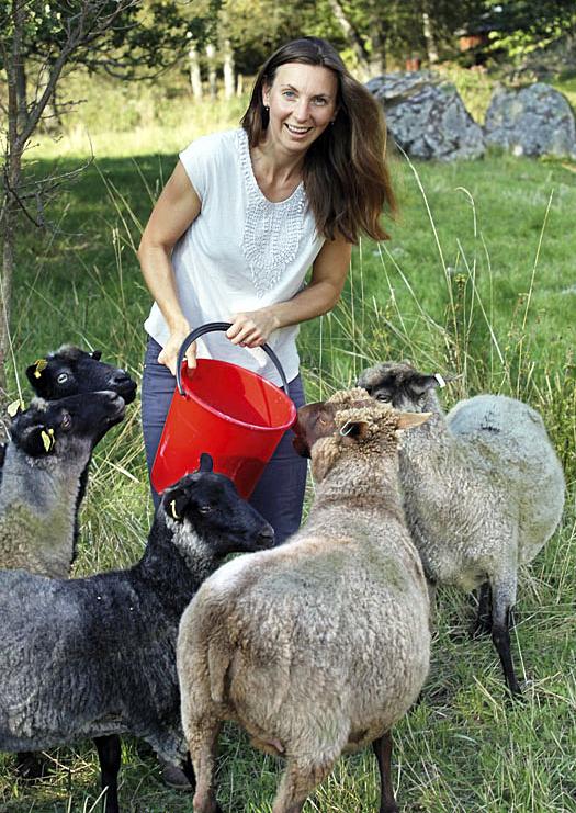 Julia Lindeborg matar sina får