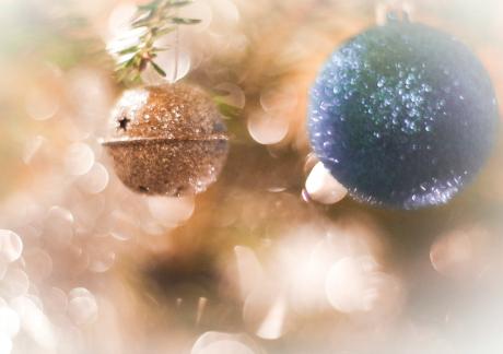 Expertens tips: Så firar du en klimatvänlig jul