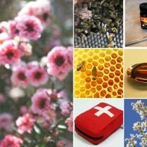 Kollage manuka honung manukablommor bin honung på sked förstabandslåda