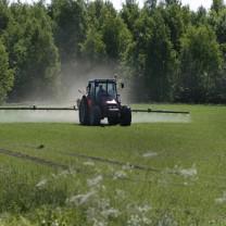 Traktor besprutar åker