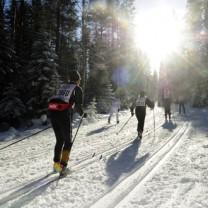 Halvvasan, Oxberg-Mora i solsken