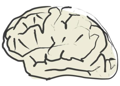 tecknad hjärna