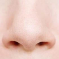 närbild på näsa