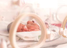 bebis i respirator