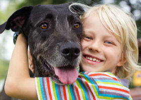 Pojke kramar sin hund