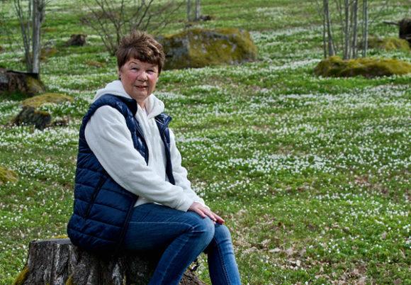 Birgitta kempe på en stubbe på en sommaräng