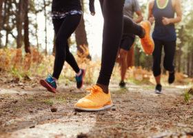fyra personer springer på skogsstig