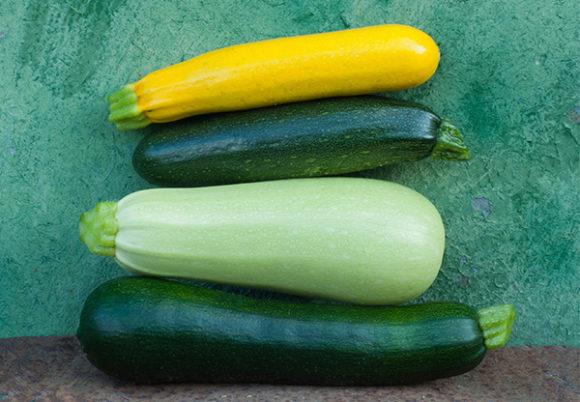 Fyra zucchinis i olika färger