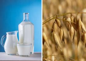 Växtbaserad mjölk och ett havreax