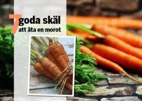 7_goda_skal_att_ata_en_morot