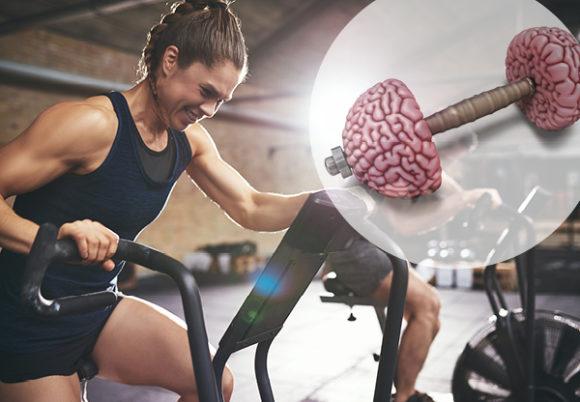 Behåll hjärnan med träning