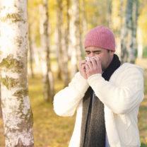 Tallbarksextrakt lindrar pollenallergi