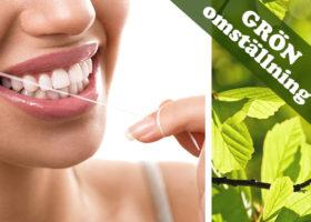 mun tandtråd vilnjetten grön omställning