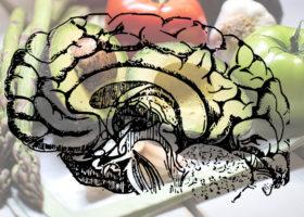 teckling av hjränan och grönsaker