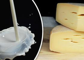 mjölk och ost