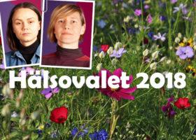 halsovalet2018 fi