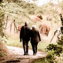 par på promenad
