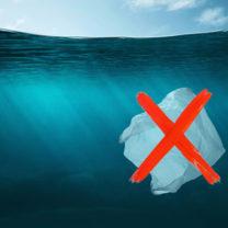 överkryssad plastpåse i vattnet