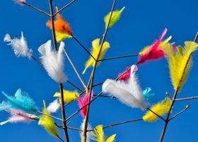 2 av 3 kommuner väljer bort fjädrar i påsk