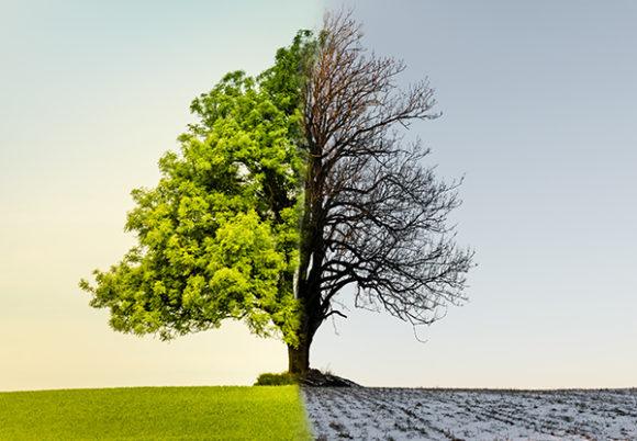 3 viktiga näringstips på våren