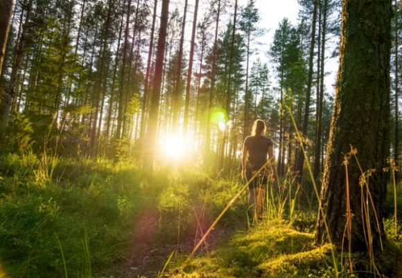 young-woman-walking-in-forest-path-at-sunset-summer-night-in-nature-