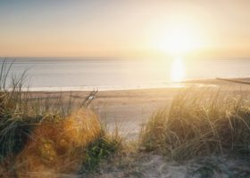 ocean-view-at-sunset-over-the-sand-dunes-on-the-baltic-sea-picture-id910581154 (1)