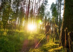 Kvinna promenerar i skogen