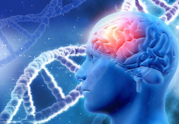 Bå illustration av en hjärna och DNA-kod