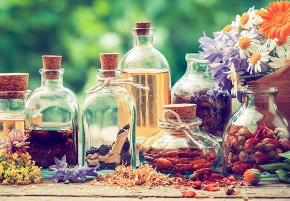 Medicinalväxter i torkad form och i flaskor