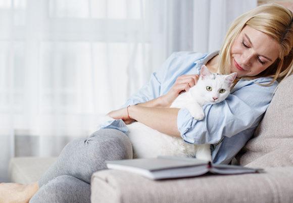 Katt kelar med kvinna i soffa