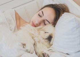 Kvinna sover med vit hund