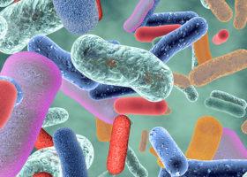 Närbild av tarmbakterier i olika färger