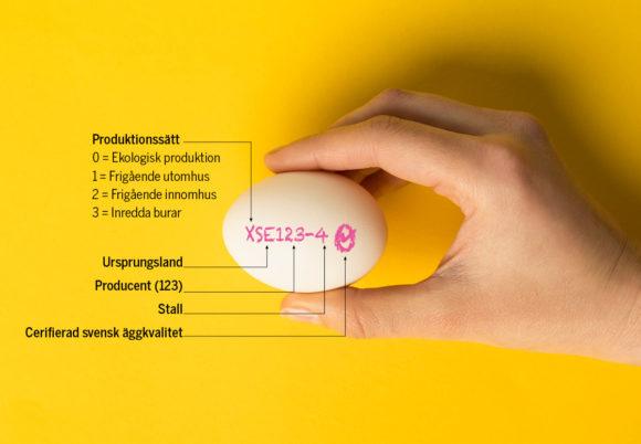 ägg med märkning