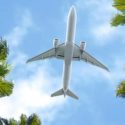 Flygplan fotat mot blå himmel och palmer