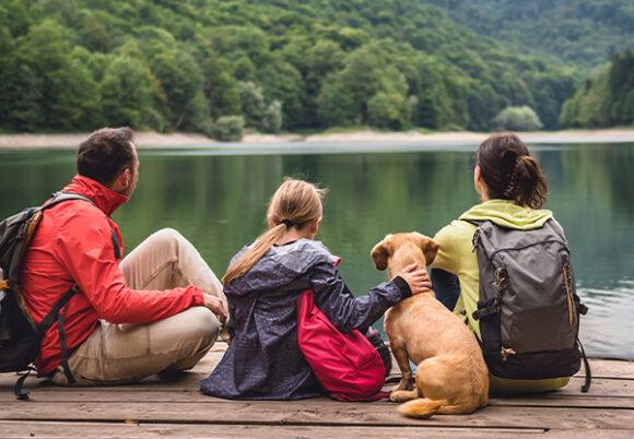Familj med hund på brygga blickar ut över sjö och skog