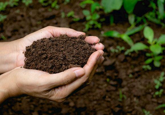 Händer håller i komposterad jord